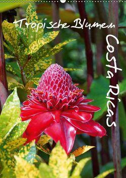 Tropische Blumen Costa Ricas (Wandkalender 2019 DIN A2 hoch) von M.Polok