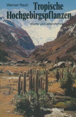 Tropische Hochgebirgspflanzen von Rauh,  Werner