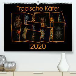 Tropische Käfer (Premium, hochwertiger DIN A2 Wandkalender 2020, Kunstdruck in Hochglanz) von Körner,  Burkhard
