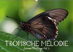 Tropische Melodie – Schmetterlinge Vol.2 (Wandkalender 2018 DIN A2 quer) von Photon (Veronika Verenin),  Vronja