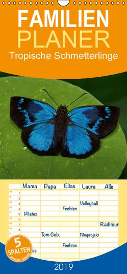 Tropische Schmetterlinge – Familienplaner hoch (Wandkalender 2019 , 21 cm x 45 cm, hoch) von Dummermuth,  Stefan
