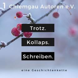 Trotz. Kollaps. Schreiben. von Chiemgau-Autoren,  Literaturverein