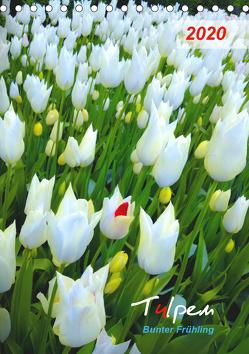 Tulpen. Bunter Frühling (Tischkalender 2020 DIN A5 hoch) von Kareva,  Eugeniya