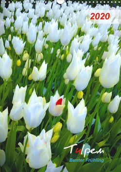 Tulpen. Bunter Frühling (Wandkalender 2020 DIN A3 hoch) von Kareva,  Eugeniya