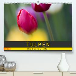 Tulpen – die bunte Vielfalt (Premium, hochwertiger DIN A2 Wandkalender 2021, Kunstdruck in Hochglanz) von Schürholz,  Peter