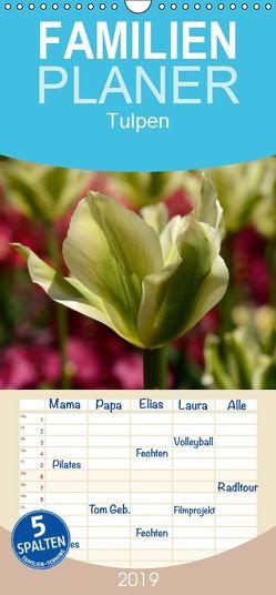 Tulpen – Familienplaner hoch (Wandkalender 2019 , 21 cm x 45 cm, hoch) von Haas,  Willi