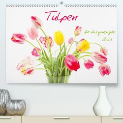 Tulpen für das ganze Jahr (Premium, hochwertiger DIN A2 Wandkalender 2021, Kunstdruck in Hochglanz) von Wojciech,  Gaby