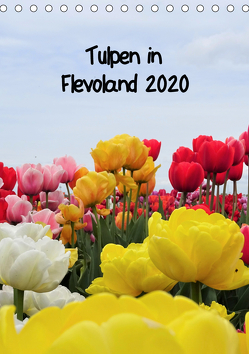 Tulpen in Flevoland (Tischkalender 2020 DIN A5 hoch) von Konkel,  Christine