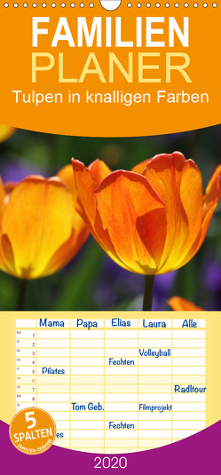Tulpen in knalligen Farben – Familienplaner hoch (Wandkalender 2020 , 21 cm x 45 cm, hoch) von SchnelleWelten