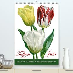 Tulpen – Jahr (Premium, hochwertiger DIN A2 Wandkalender 2021, Kunstdruck in Hochglanz) von bilwissedition.com Layout: Babette Reek,  Bilder: