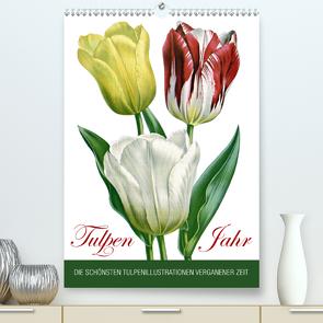 Tulpen – Jahr (Premium, hochwertiger DIN A2 Wandkalender 2020, Kunstdruck in Hochglanz) von bilwissedition.com Layout: Babette Reek,  Bilder: