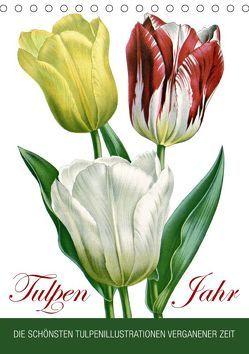 Tulpen – Jahr (Tischkalender 2019 DIN A5 hoch) von bilwissedition.com Layout: Babette Reek,  Bilder: