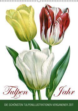 Tulpen – Jahr (Wandkalender 2019 DIN A2 hoch) von bilwissedition.com Layout: Babette Reek,  Bilder:
