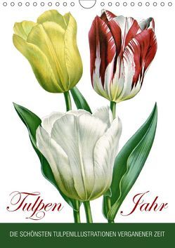Tulpen – Jahr (Wandkalender 2019 DIN A4 hoch) von bilwissedition.com Layout: Babette Reek,  Bilder: