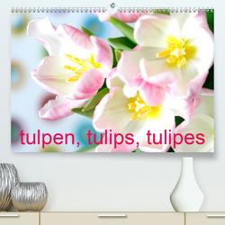 Tulpen, Tulips, Tulipes (Premium, hochwertiger DIN A2 Wandkalender 2020, Kunstdruck in Hochglanz) von Kruse,  Gisela