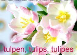 Tulpen, Tulips, Tulipes (Wandkalender 2019 DIN A2 quer) von Kruse,  Gisela