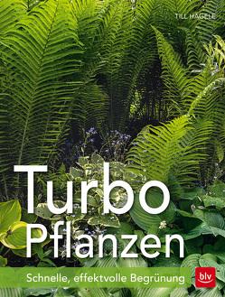 Turbo-Pflanzen von Hägele,  Till