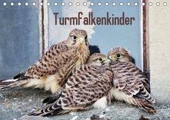 Turmfalkenkinder (Tischkalender 2019 DIN A5 quer) von Grabow,  Ulrike