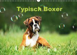 Typisch Boxer (Wandkalender 2019 DIN A3 quer) von Janetzek,  Yvonne