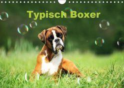 Typisch Boxer (Wandkalender 2019 DIN A4 quer) von Janetzek,  Yvonne