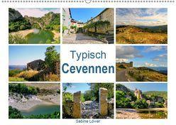 Typisch Cevennen (Wandkalender 2019 DIN A2 quer) von Löwer,  Sabine