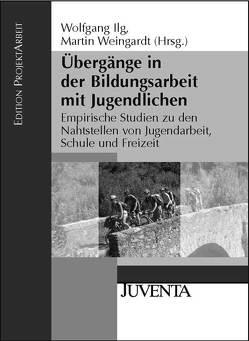 Übergänge in der Bildungsarbeit mit Jugendlichen von Ilg,  Wolfgang, Weingardt,  Martin