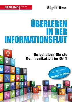 Überleben in der Informationsflut von Hess,  Sigrid