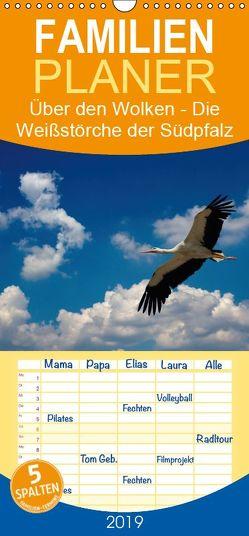 Über den Wolken – Die Weißstörche der Südpfalz – Familienplaner hoch (Wandkalender 2019 , 21 cm x 45 cm, hoch) von Di Chito,  Ursula