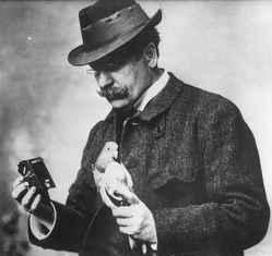 Über Julius Neubronner und wie er die Brieftaubenphotographie erfand von Nieraad,  Karla