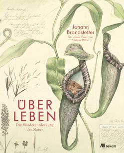 Über Leben von Brandstetter,  Johann, Weber,  Andreas
