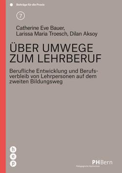 Über Umwege zum Lehrberuf von Aksoy,  Dilan, Bauer,  Catherine Eve, Troesch,  Larissa Maria