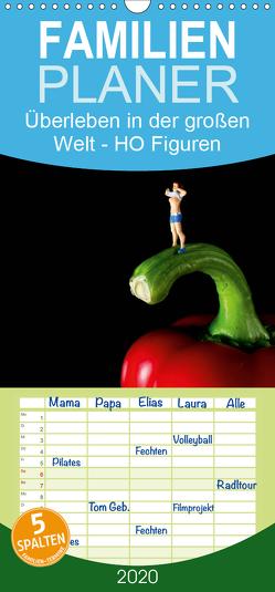 Überleben in der großen Welt – HO Figuren – Familienplaner hoch (Wandkalender 2020 , 21 cm x 45 cm, hoch) von Rochow,  Holger