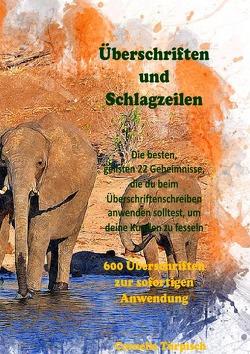 Überschriften und Schlagzeilen & 600 Überschriften für Ihr Business zum sofortigem anwenden von Türpisch,  Cornelia