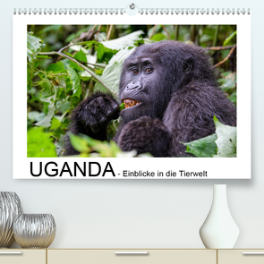 UGANDA – Einblicke in die Tierwelt (Premium, hochwertiger DIN A2 Wandkalender 2020, Kunstdruck in Hochglanz) von Jürs,  Thorsten