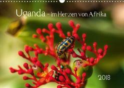 Uganda – im Herzen von Afrika (Wandkalender 2018 DIN A3 quer) von Bethke,  Barbara