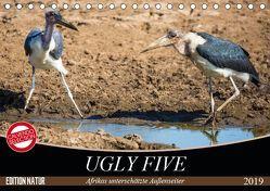 Ugly Five (Tischkalender 2019 DIN A5 quer) von & Stefanie Krüger,  Carsten