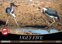Ugly Five (Wandkalender 2019 DIN A3 quer) von & Stefanie Krüger,  Carsten