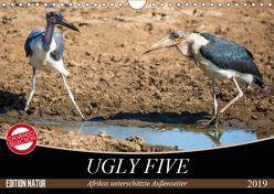 Ugly Five (Wandkalender 2019 DIN A4 quer) von & Stefanie Krüger,  Carsten
