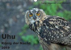Uhu – König der Nacht (Wandkalender 2019 DIN A3 quer) von Hilsmann,  Uwe, Segelcke,  Daniel
