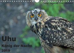 Uhu – König der Nacht (Wandkalender 2019 DIN A4 quer) von Hilsmann,  Uwe, Segelcke,  Daniel