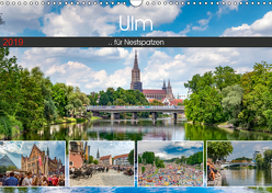 Ulm für Nestspatzen (Wandkalender 2019 DIN A3 quer) von Photography,  Trancerapid