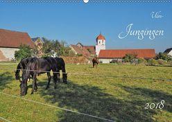 Ulm-Jungingen (Wandkalender 2018 DIN A2 quer) von Rohwer,  Klaus