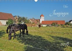 Ulm-Jungingen (Wandkalender 2018 DIN A3 quer) von Rohwer,  Klaus