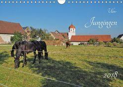 Ulm-Jungingen (Wandkalender 2018 DIN A4 quer) von Rohwer,  Klaus