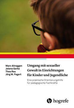Umgang mit sexueller Gewalt in Einrichtungen für Kinder und Jugendliche von Allroggen,  Marc, Fegert,  Jörg M, Gerke,  Jelena, Rau,  Thea