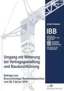 Umgang mit Witterung bei Vertragsgestaltung und Baudurchführung von Schwerdtner,  Patrick