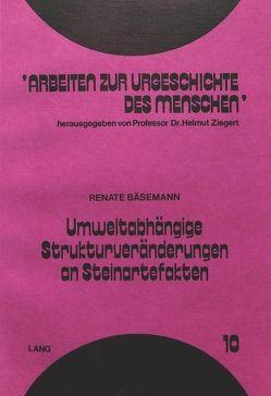 Umweltabhängige Strukturveränderungen an Steinartefakten von Bäsemann,  Renate