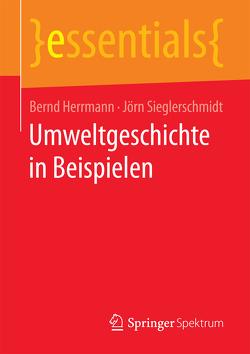 Umweltgeschichte in Beispielen von Herrmann,  Bernd, Sieglerschmidt,  Jörn