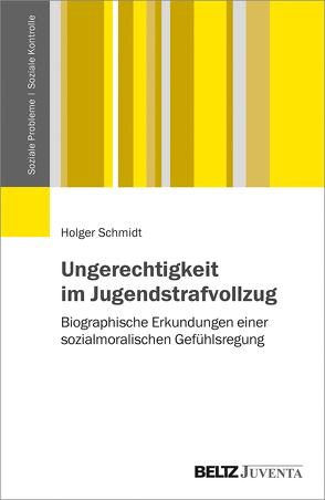 Ungerechtigkeit im Jugendstrafvollzug von Schmidt,  Holger