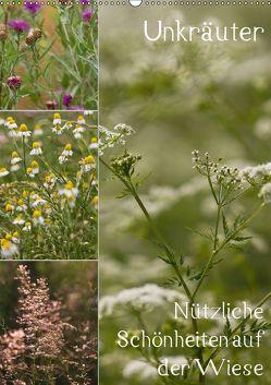 Unkräuter – Nützliche Schönheiten auf der Wiese (Wandkalender 2019 DIN A2 hoch)